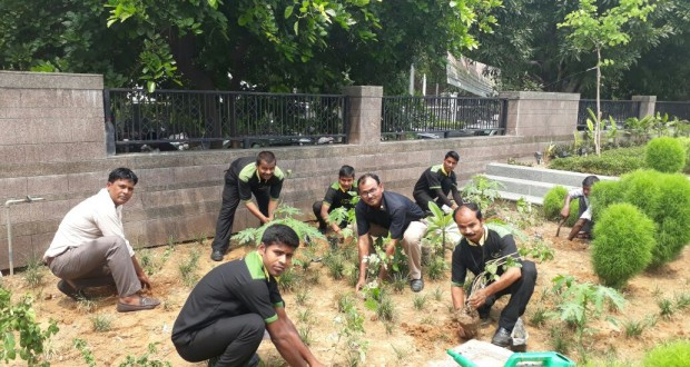 Plant sapling activity organizes by Reliance mall